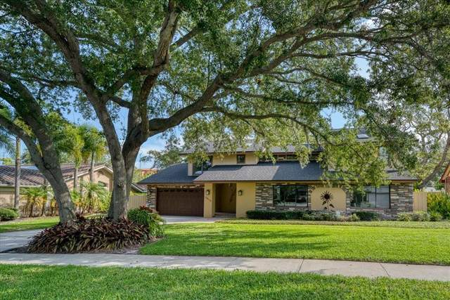 14113 Harborwood Drive, Largo, FL 33774 (MLS #U8131298) :: Dalton Wade Real Estate Group