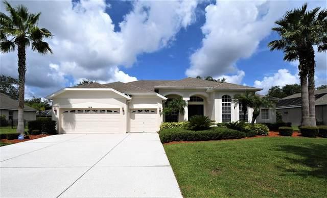 19118 Larchmont Drive, Odessa, FL 33556 (MLS #U8131300) :: Vacasa Real Estate