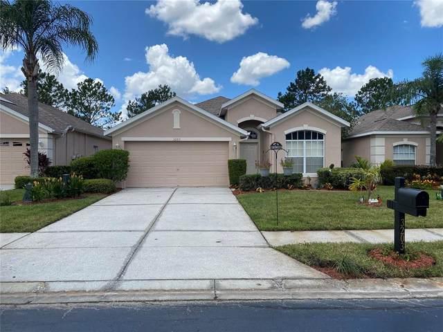 3203 Banyan Hill Lane, Land O Lakes, FL 34639 (MLS #U8131313) :: Burwell Real Estate