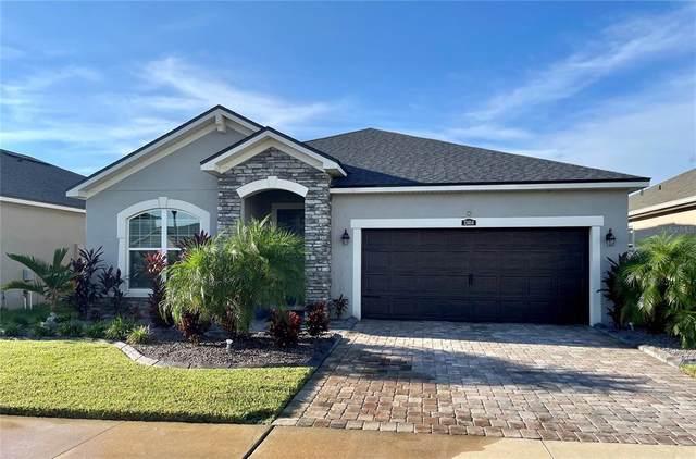 13014 Rain Lily Drive, Riverview, FL 33579 (MLS #U8131314) :: Dalton Wade Real Estate Group