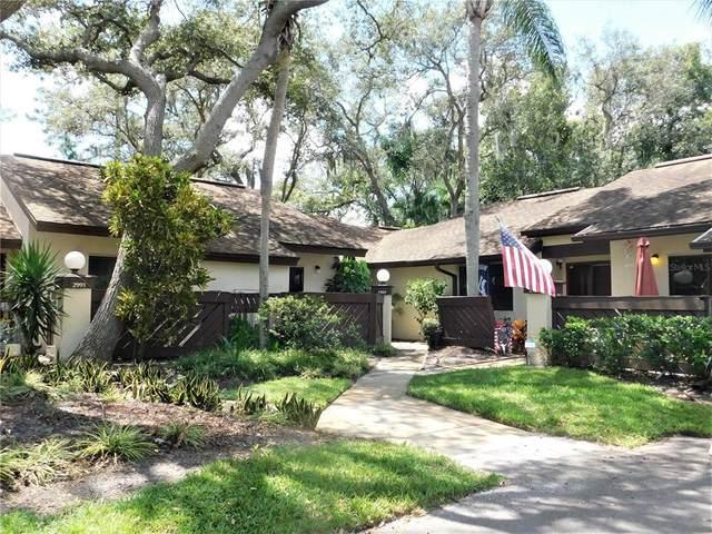 2989 Elder Court, Palm Harbor, FL 34684 (MLS #U8131316) :: Griffin Group