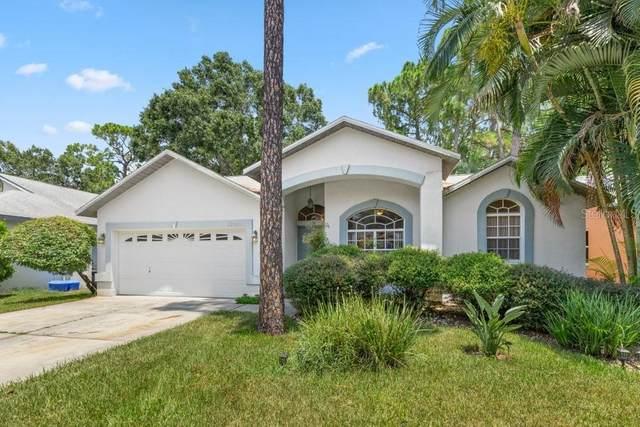 11961 67TH Lane, Largo, FL 33773 (MLS #U8131350) :: Zarghami Group