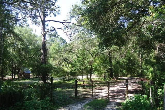0 Mccaw, Brooksville, FL 34601 (MLS #U8131369) :: MavRealty