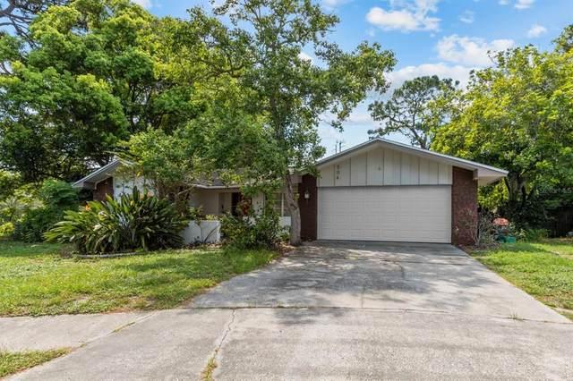 504 Bamboo Court, Tarpon Springs, FL 34689 (MLS #U8131371) :: Zarghami Group