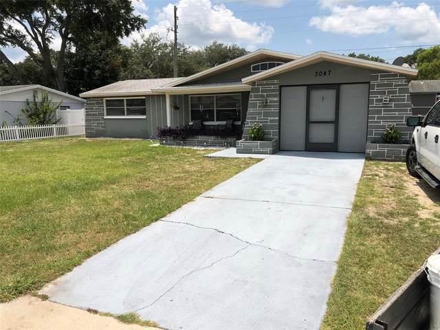 3047 Finch Drive, Holiday, FL 34690 (MLS #U8131372) :: Zarghami Group
