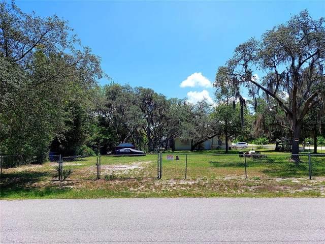 12227 Terra Ceia Avenue, New Port Richey, FL 34654 (MLS #U8131429) :: Century 21 Professional Group