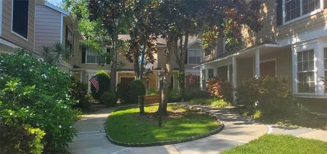2416 Hounds Trail #2416, Palm Harbor, FL 34683 (MLS #U8131431) :: Vacasa Real Estate