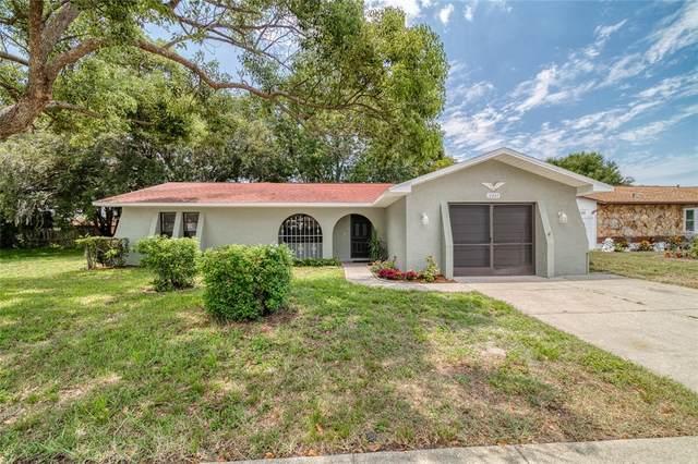 12845 Walnut Tree Lane, Hudson, FL 34669 (MLS #U8131451) :: Zarghami Group