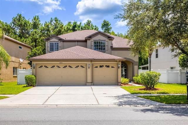 18141 Sandy Pointe Drive, Tampa, FL 33647 (MLS #U8131481) :: CARE - Calhoun & Associates Real Estate