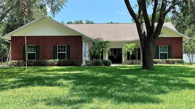 28453 Sonny Drive, Wesley Chapel, FL 33544 (MLS #U8131504) :: Zarghami Group