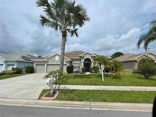 2546 Wood Pointe Drive, Holiday, FL 34691 (MLS #U8131531) :: Zarghami Group