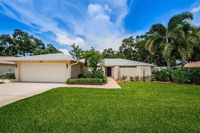 2270 Westbury Avenue, Clearwater, FL 33764 (MLS #U8131561) :: CARE - Calhoun & Associates Real Estate