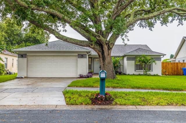 1719 Bell Ranch Street, Brandon, FL 33511 (MLS #U8131585) :: The Robertson Real Estate Group