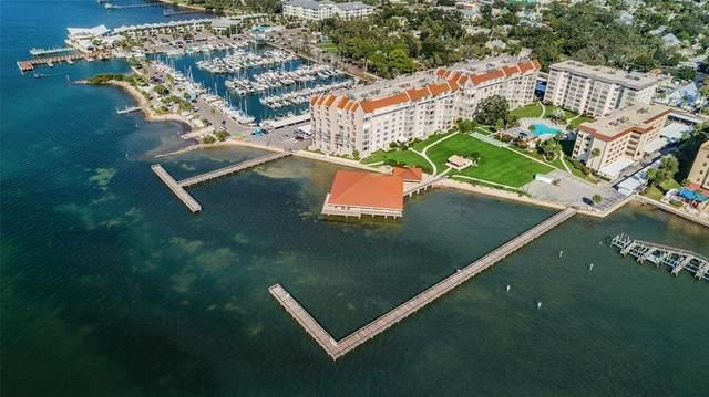 620 Edgewater Drive #204, Dunedin, FL 34698 (MLS #U8131675) :: Dalton Wade Real Estate Group