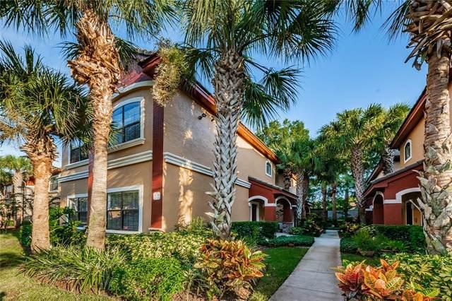 2220 Chianti Place #815, Palm Harbor, FL 34683 (MLS #U8131711) :: Florida Real Estate Sellers at Keller Williams Realty