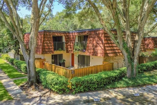 2612 2ND Court, Palm Harbor, FL 34684 (MLS #U8131728) :: Frankenstein Home Team