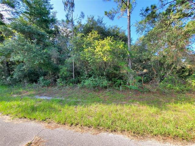 1324 Tallahassee Court, Poinciana, FL 34759 (MLS #U8131817) :: Gate Arty & the Group - Keller Williams Realty Smart
