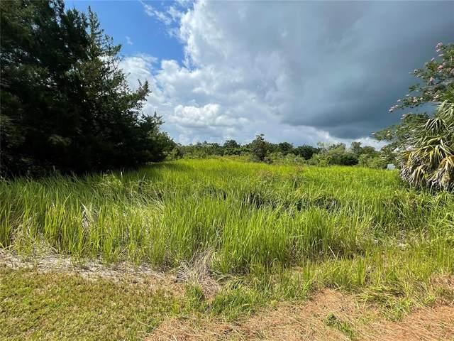 13184 Sun Road, Brooksville, FL 34613 (MLS #U8131875) :: Cartwright Realty