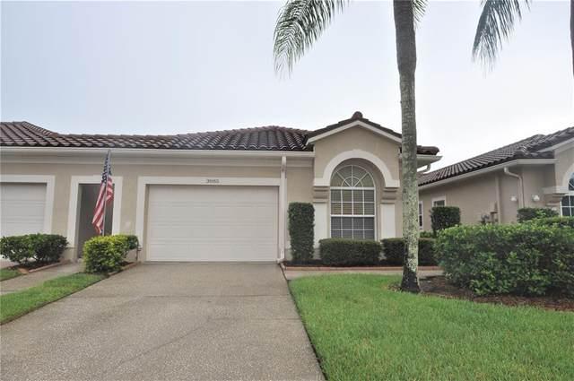 3885 Timber Ridge Court, Palm Harbor, FL 34685 (MLS #U8131883) :: Delgado Home Team at Keller Williams