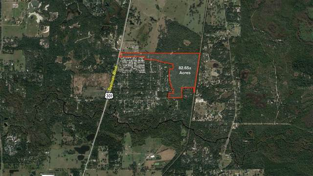 Treiman Boulevard, Dade City, FL 33523 (MLS #U8131892) :: The Duncan Duo Team