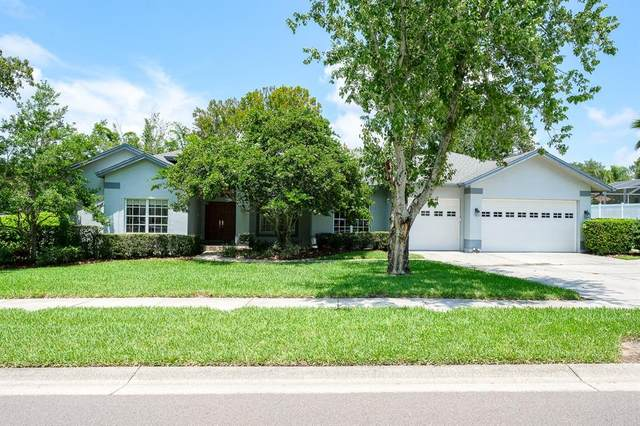 630 Belted Kingfisher Drive N, Palm Harbor, FL 34683 (MLS #U8131910) :: Delgado Home Team at Keller Williams