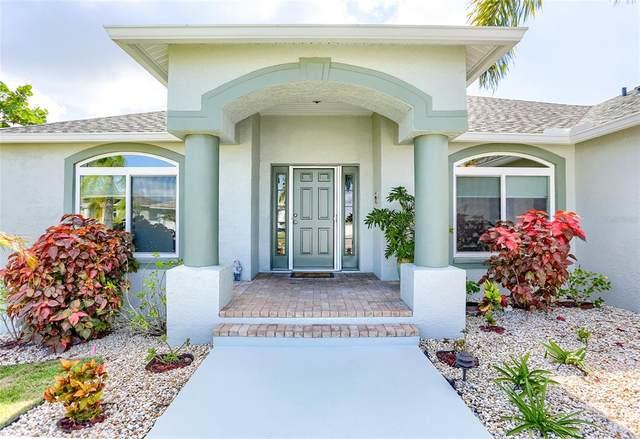 6519 King Palm Way, Apollo Beach, FL 33572 (MLS #U8131925) :: Vacasa Real Estate