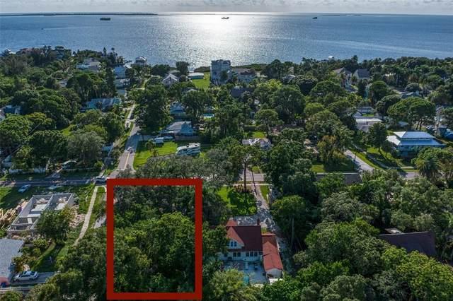 Georgia Avenue, Crystal Beach, FL 34681 (MLS #U8131932) :: Expert Advisors Group