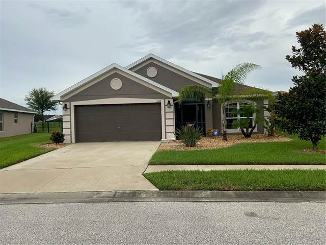 13242 Niti Drive, Hudson, FL 34669 (MLS #U8131950) :: Cartwright Realty