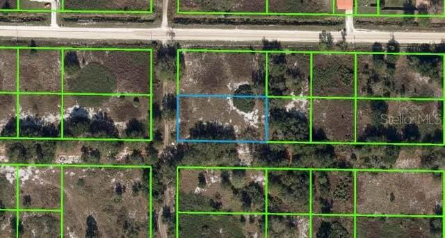 2866 W Haviland Road, Avon Park, FL 33825 (MLS #U8131952) :: Everlane Realty
