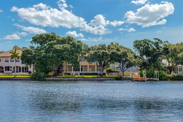 1100 Monterey Boulevard NE, St Petersburg, FL 33704 (MLS #U8132067) :: Future Home Realty