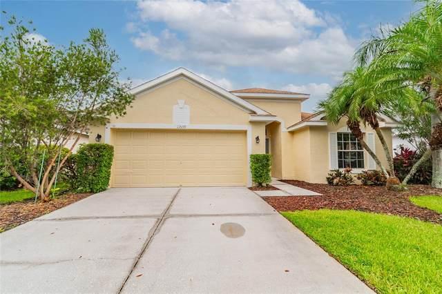 11539 Cypress Reserve Drive, Tampa, FL 33626 (MLS #U8132080) :: GO Realty