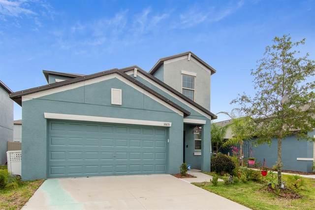 10031 Rosemary Leaf Lane, Riverview, FL 33578 (MLS #U8132155) :: Century 21 Professional Group