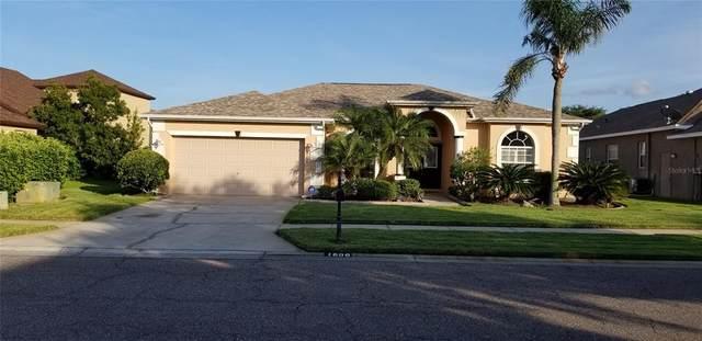 1606 Kish Boulevard, Trinity, FL 34655 (MLS #U8132162) :: Cartwright Realty