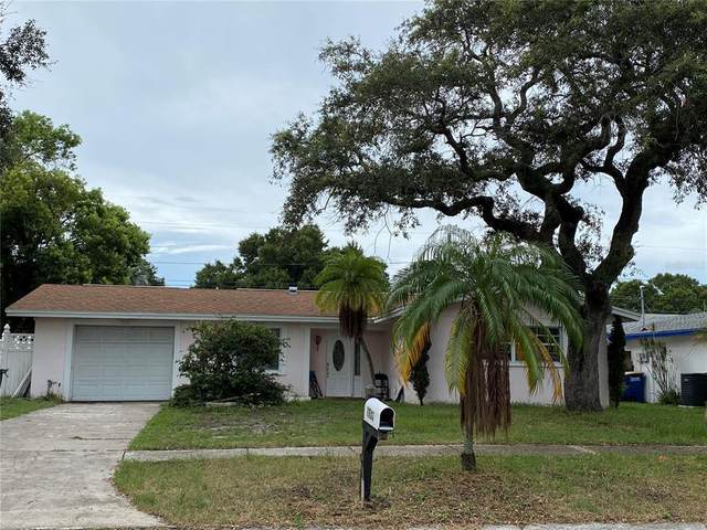 1736 Greenlea Dr, Clearwater, FL 33755 (MLS #U8132164) :: Griffin Group