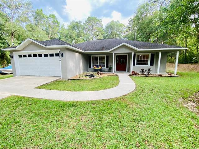 26890 Hiawatha Boulevard, Brooksville, FL 34601 (MLS #U8132166) :: Everlane Realty