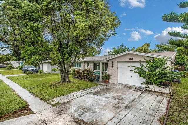 4625 Madison Street, New Port Richey, FL 34652 (MLS #U8132204) :: The Light Team