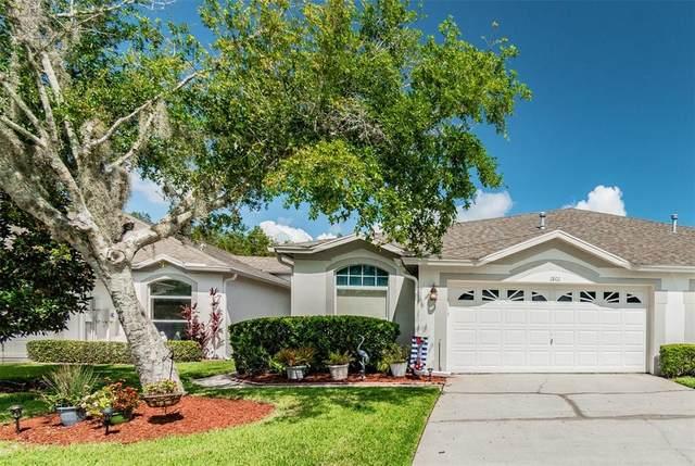 1801 Sassafras Drive, Wesley Chapel, FL 33543 (MLS #U8132214) :: Delgado Home Team at Keller Williams