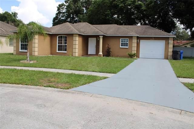 6923 Wildwood Oak Drive, Tampa, FL 33617 (MLS #U8132345) :: Vacasa Real Estate