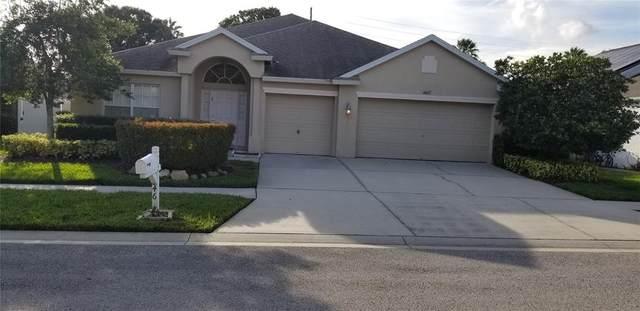 4627 Braesgate Court, Land O Lakes, FL 34639 (MLS #U8132352) :: Keller Williams Realty Peace River Partners