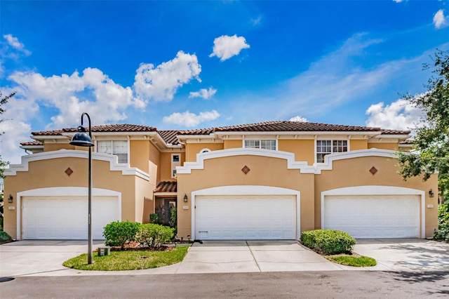 204 Valencia Circle, St Petersburg, FL 33716 (MLS #U8132368) :: Medway Realty