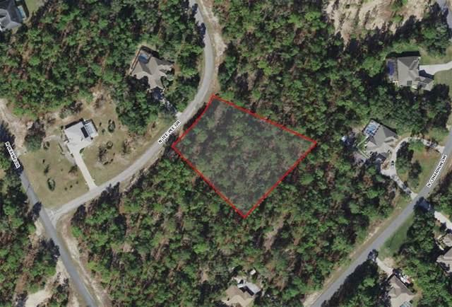 5021 N Tee Pee Drive, Beverly Hills, FL 34465 (MLS #U8132449) :: Premium Properties Real Estate Services