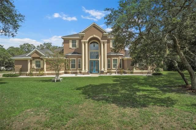 17748 Nokota Avenue, Hudson, FL 34667 (MLS #U8132450) :: Florida Real Estate Sellers at Keller Williams Realty