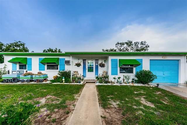 6451 Holiday Drive, Spring Hill, FL 34606 (MLS #U8132475) :: Everlane Realty