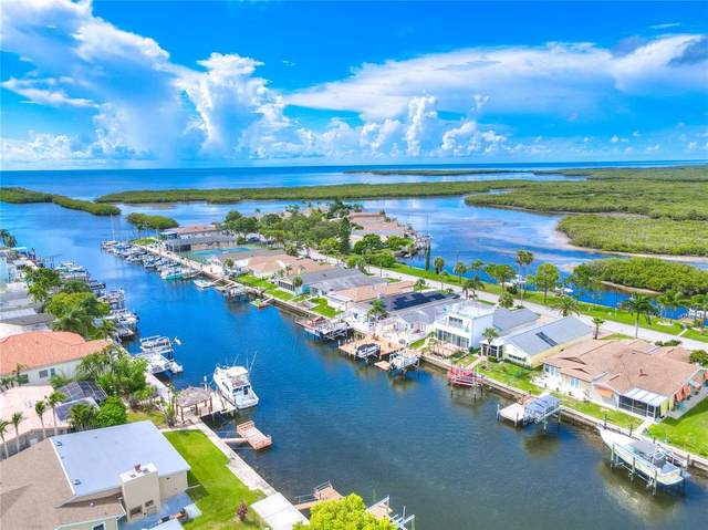 4016 Marine Parkway, New Port Richey, FL 34652 (MLS #U8132493) :: The Light Team