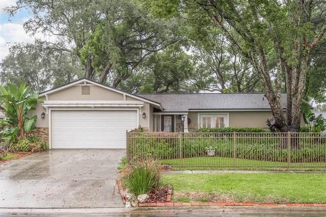 17813 Rivendel Road, Lutz, FL 33549 (MLS #U8132569) :: Godwin Realty Group
