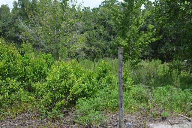 Saint Marks, Land O Lakes, FL 34638 (MLS #U8132669) :: Premium Properties Real Estate Services