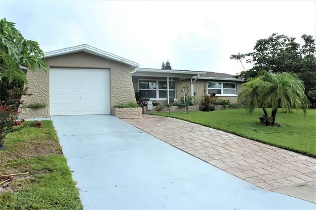 5815 Liddell Drive, New Port Richey, FL 34652 (MLS #U8132733) :: Everlane Realty