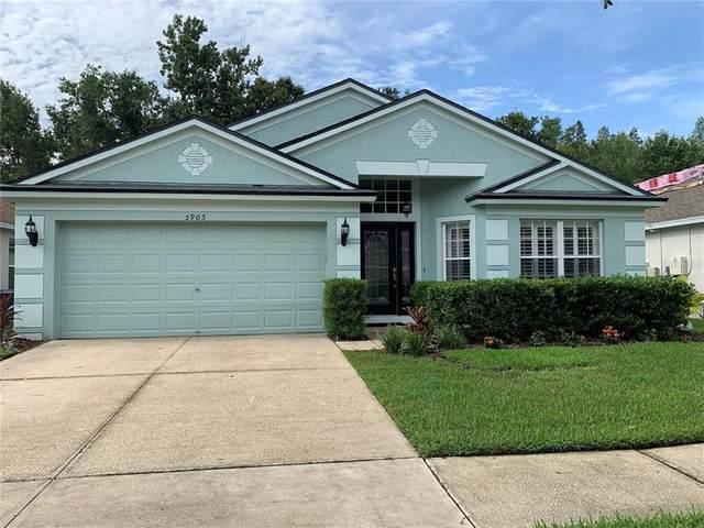 5905 War Admiral Drive, Wesley Chapel, FL 33544 (MLS #U8132761) :: Everlane Realty