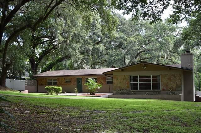 1205 Lakewood Drive, Brandon, FL 33510 (MLS #U8133748) :: Team Bohannon