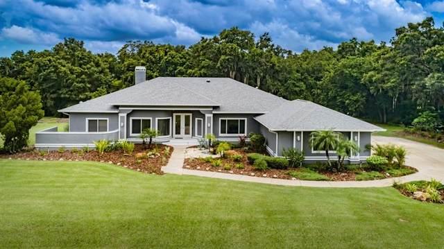 1215 Oak Meadow Point, New Port Richey, FL 34655 (MLS #U8133759) :: Zarghami Group
